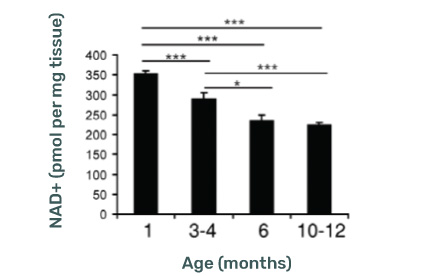 NAD+ (pmol per mg tissue) Levels decline with age