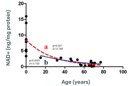 NAD+ (ng/mg protein) Levels decline with age